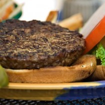 5 oz Handmade Hamburger